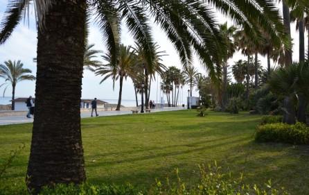 Grönområde vid stranden