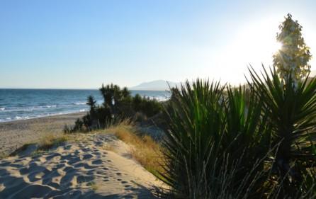 Sanddyner vid Los Monteros Playa