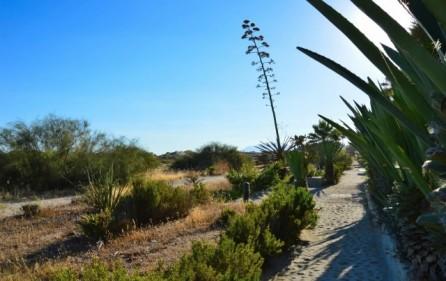 Strandpromenad Los Monteros Playa