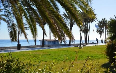 Grönområde San Pedro Playa