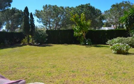Trädgård framför terrass