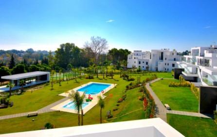 Utsikt mot pool och trädgård