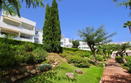 Trädgårdar i bostadsområdet
