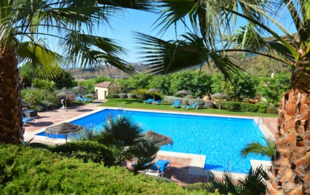 Pool och trädgård